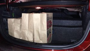 Bags in the Trunk - 500